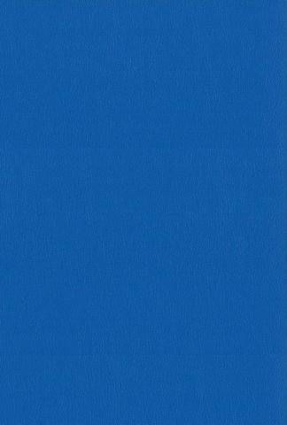 SK06 bleu